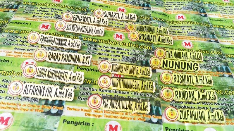 Nama Dada Logo Ikatan Bidan Indonesia