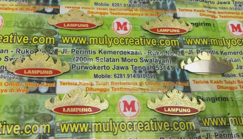 Pin Siger PNS Lampung